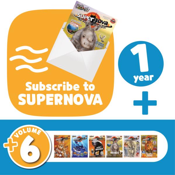 Subscribe + Volume 6 Set