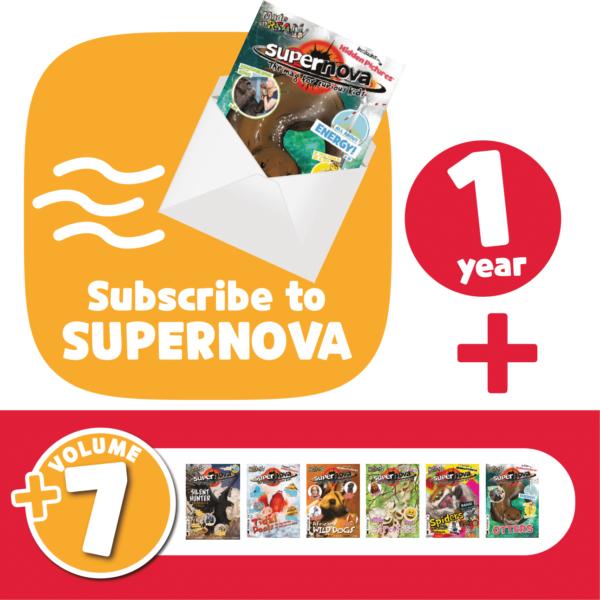 Subscribe + Volume 7 Set